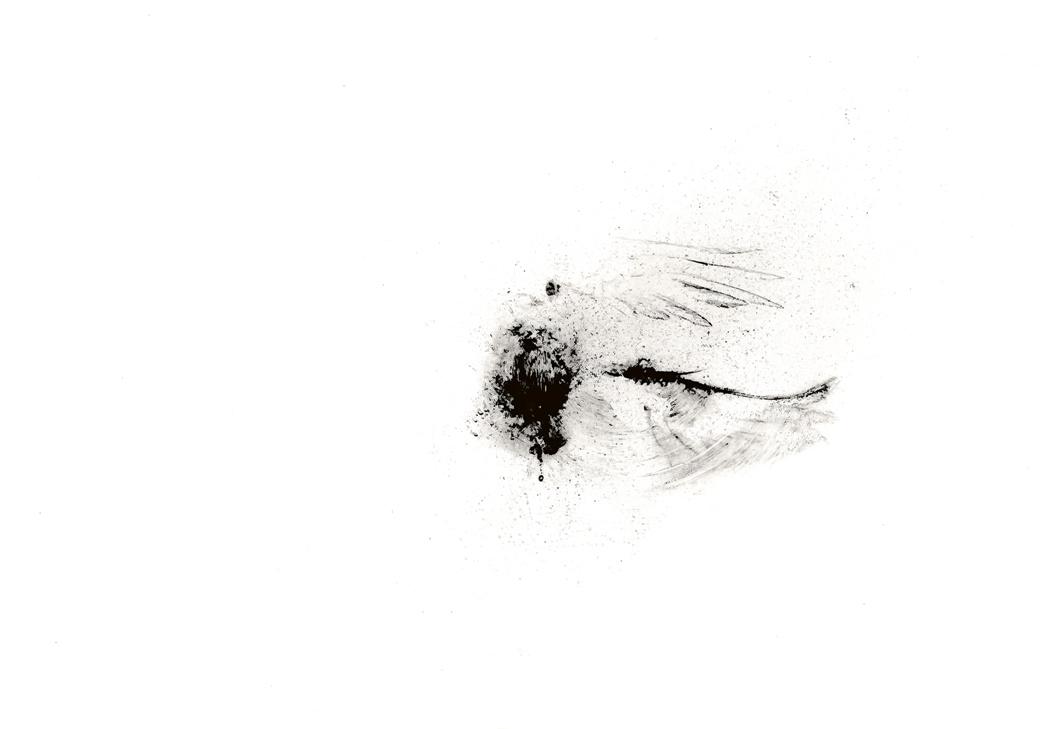 o.T. - 2017 - digital print
