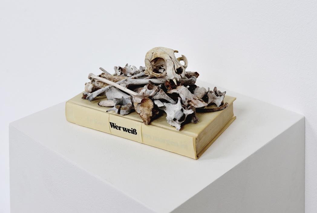 wer weiß - 2016 - Assemblage - Buch, Tierknochen, Klebeband